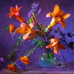 Still Life Studio - Colourful Indoor Art