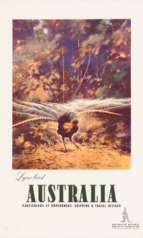 Lyrebird - Vintage Travel Poster by James Northfield