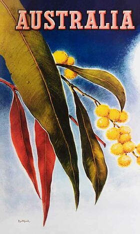 Australia,_Wattle - Vintage Travel Poster by James Northfield