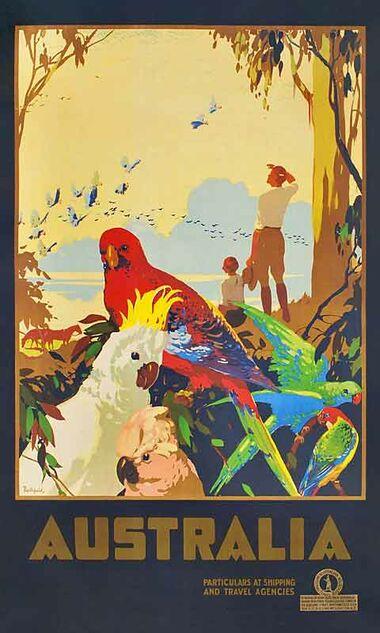 Australian_Parrots_II - Vintage Travel Poster by James Northfield