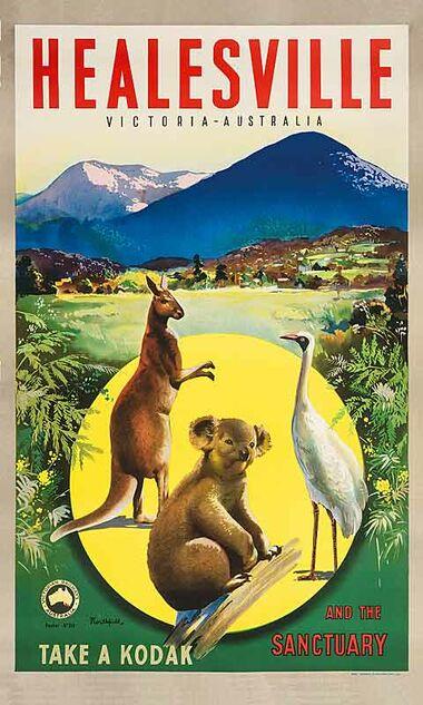 Healesville - Vintage Travel Poster by James Northfield